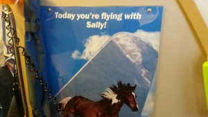 Sally the Mustang Frontier